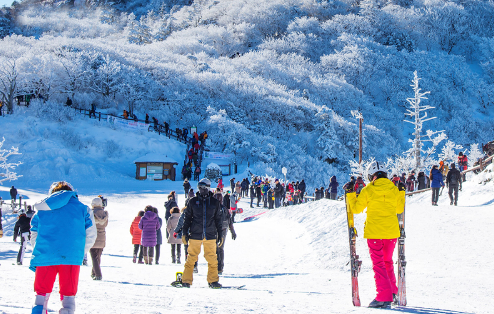 Skiing as the most popular winter sport in Korea